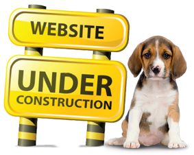 website-under-construction-dog-1